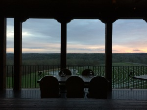 Overlooking the vineyard